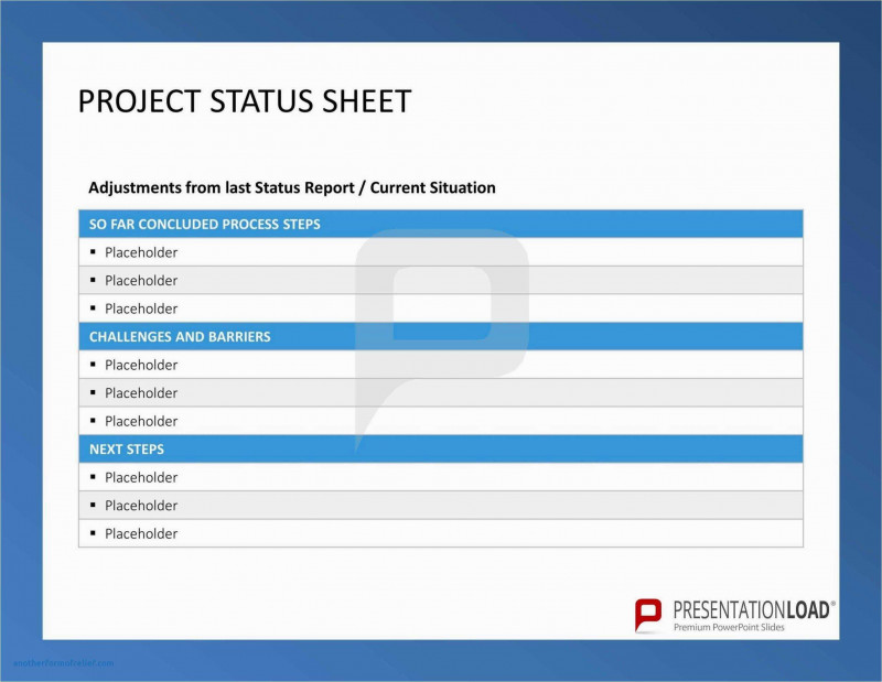 Testing Daily Status Report Template New Project Status Report Template Excel Free Download Templates Word