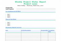Testing Weekly Status Report Template Unique 007 Template Ideas Weekly Status Incredible Report Project Word Free