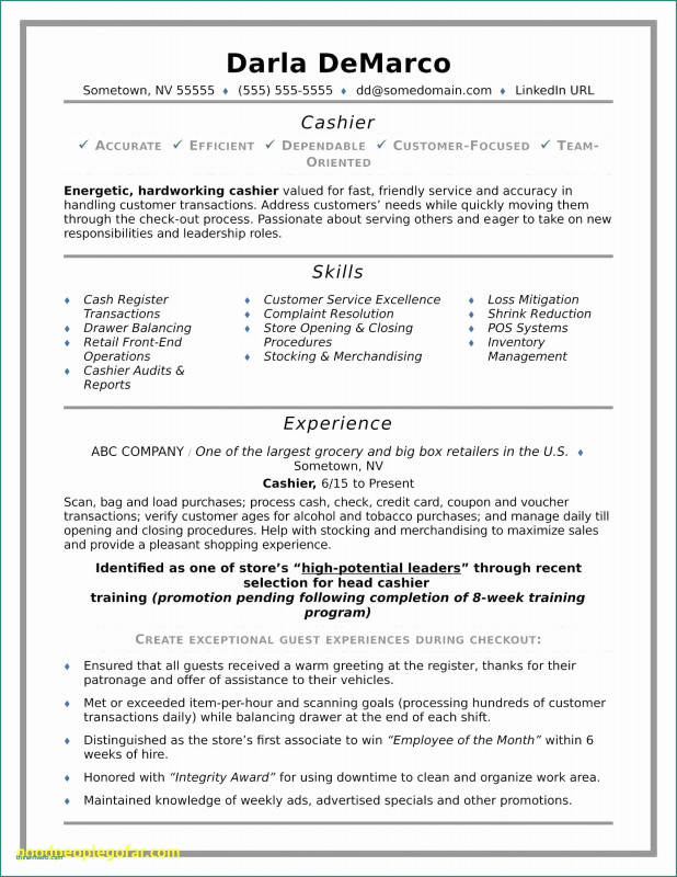 Vendor Due Diligence Report Template Awesome Resume For It Job Inspirational Resume Template Samples Nanny Resume