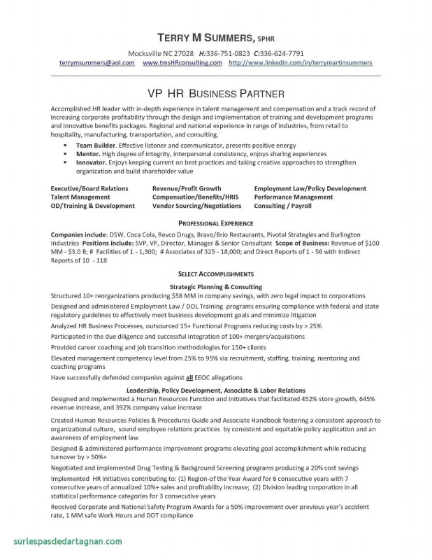 Vendor Due Diligence Report Template Unique 45 Best Of Restaurant Business Plan Template south Africa Photos