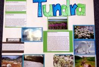 Brochure Rubric Template Awesome Example Of A Biome Travel Brochure Leancy Travel