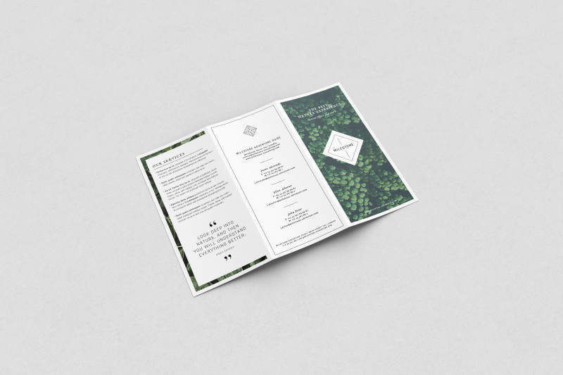 Free Online Tri Fold Brochure Template Awesome Free Trifold Brochure Mockup On Behance