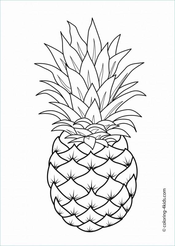 Nutrition Brochure Template Unique Tropical Rainforest Powerpoint Decent A¢a‹†a…a Ppt 0d Nanostructures