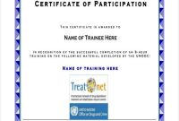Certificate Of Participation In Workshop Template 4