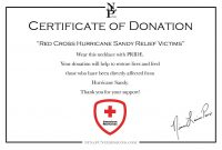 Donation Certificate Template 5