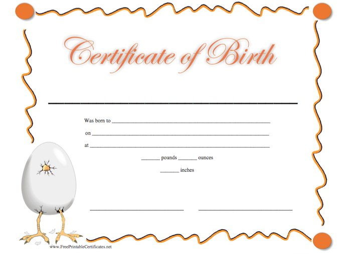 Editable Birth Certificate Template 12
