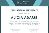 Professional Award Certificate Template 4