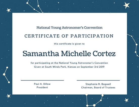 Sample Certificate Of Participation Template 5