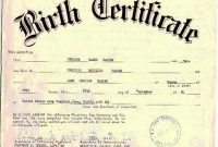 South African Birth Certificate Template 5