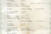 South African Birth Certificate Template 6