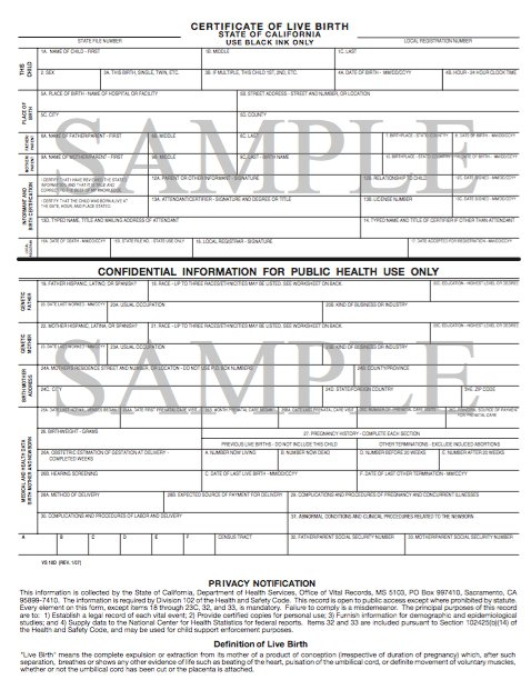 South African Birth Certificate Template 7