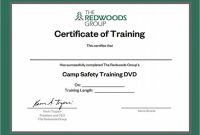 Template for Training Certificate 6