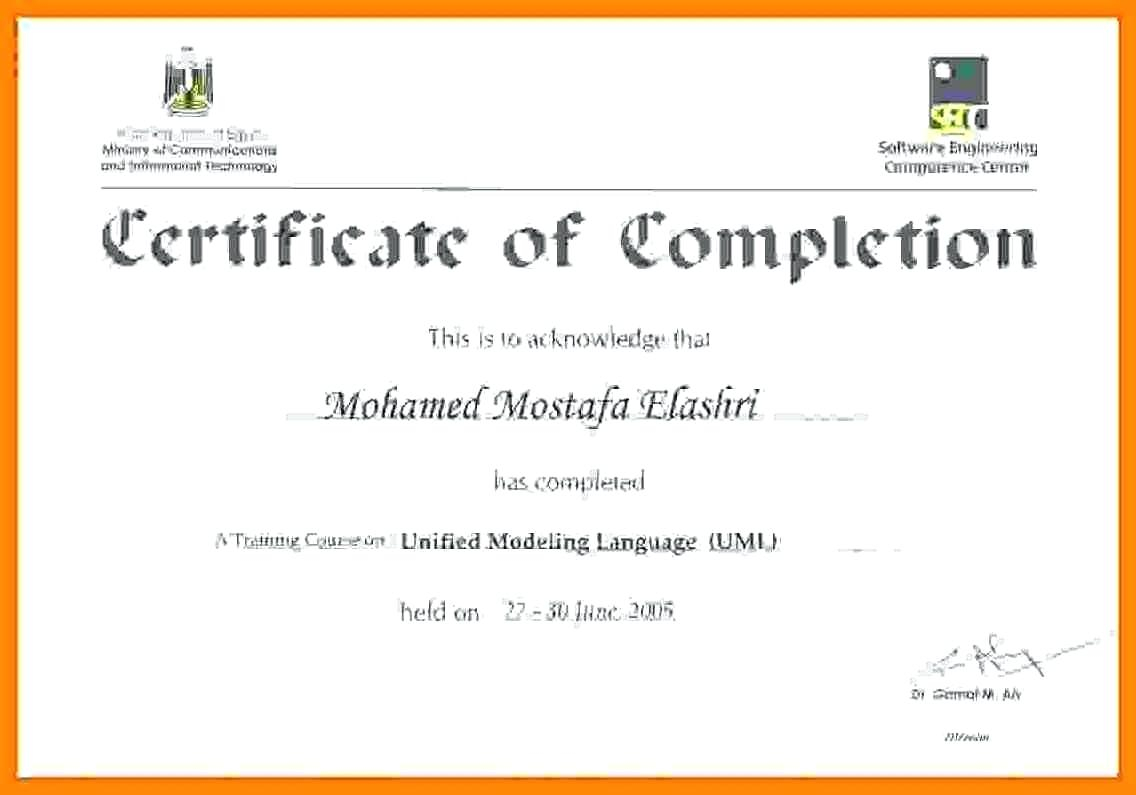 Training Certificate Template Word Format 8