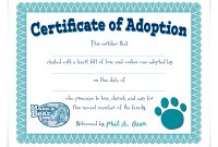 Build A Bear Birth Certificate Template 11