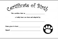Build A Bear Birth Certificate Template 5