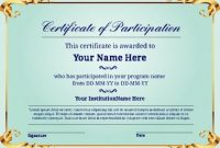 Certificate Of Participation Template Pdf 11