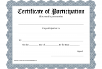 Certificate Of Participation Template Pdf 3