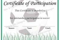 Certificate Of Participation Template Pdf 9