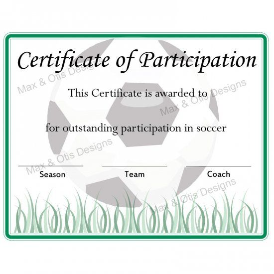 Certificate Of Participation Template Pdf 9