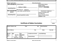 Certificate Of Vaccination Template 6