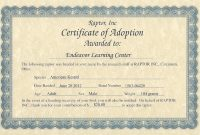 Child Adoption Certificate Template 6