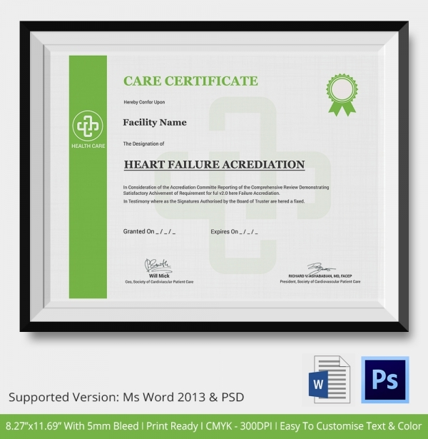 Professional Certificate Templates For Word 5