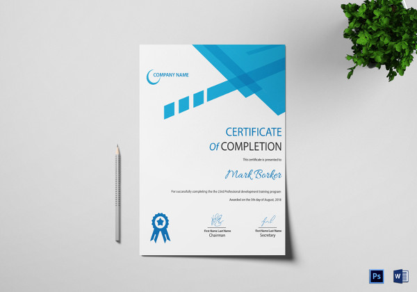Professional Certificate Templates For Word 6