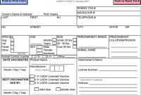 Rabies Vaccine Certificate Template 3