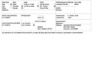 Rabies Vaccine Certificate Template 8
