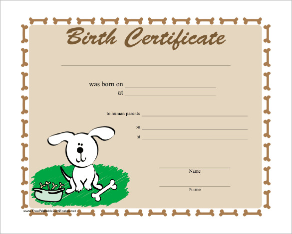 Birth Certificate Templates For Word 7