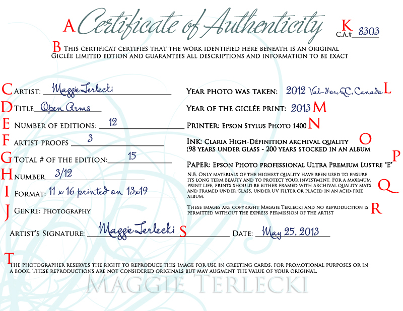 Certificate Of Authenticity Photography Template 4