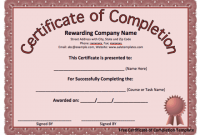 Certificate Of Completion Template Word 12