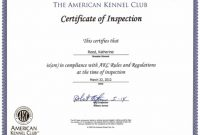 Certificate Of Inspection Template 1