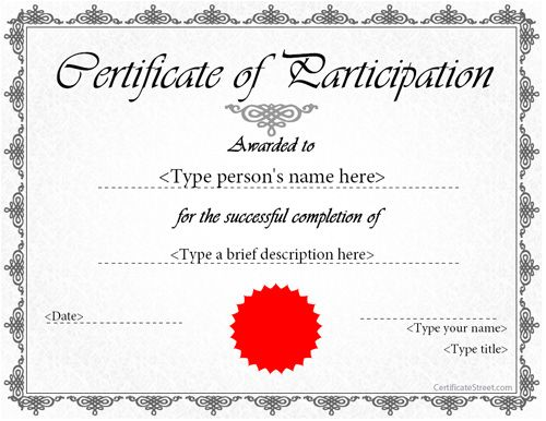 Certificate Of Participation Template Ppt 5