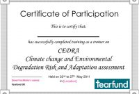 Certificate Of Participation Template Ppt 8