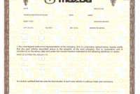 Certificate Of origin for A Vehicle Template2