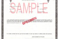 Certificate Of origin for A Vehicle Template7