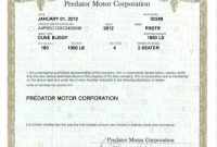 Certificate Of origin for A Vehicle Template9