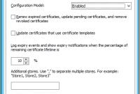 Domain Controller Certificate Template 6