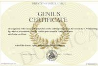 Iq Certificate Template 0