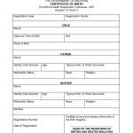 Mexican Birth Certificate Translation Template
