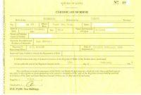 Novelty Birth Certificate Template 8