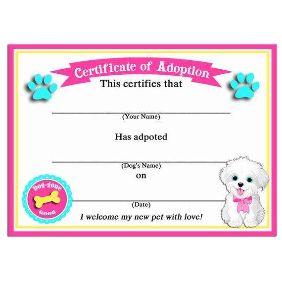 Pet Adoption Certificate Template 8