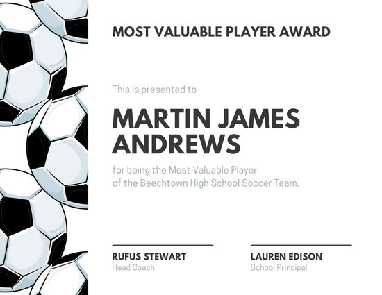 Player Of The Day Certificate Template 13