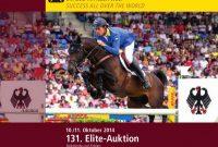 Pet Adoption Certificate Template Awesome 131 Elite Auktion Reitpferde Und Fohlen 131st Elite