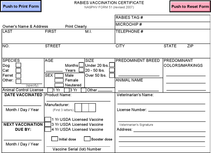 Dog Vaccination Certificate Template 4