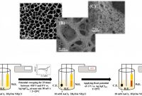33 Labels Per Sheet Template Awesome Nanomaterials Free Full Text Porous Gold A New Frontier