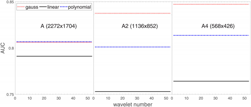 3x8 Label Template Awesome Resolution Invariant Wavelet Features Of Melanoma Studied By
