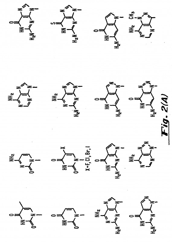 99.1 Mm X 38.1 Mm Label Template Unique Peptide Nucleic Acids Patent 1411063