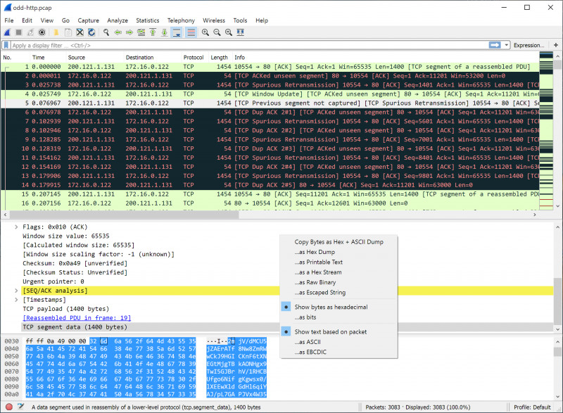 Blank Four Square Writing Template Awesome Wireshark Users Guide